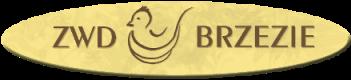 Zakład Wylęgu Drobiu w Brzeziu | Wylęgarnia Drobiu
